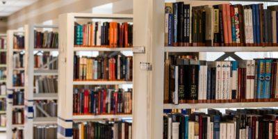 Row Of Books In Shelf 256541